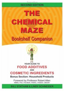 Chemical Maze by B. Statham & L. Schneider