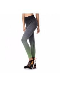 Sport Yoga Gym Quick Dry Yoga Long Pants Green