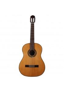 Custom Acoustic CG15