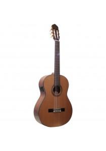 Custom Acoustic CG80E