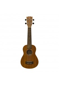 Custom Acoustic US3