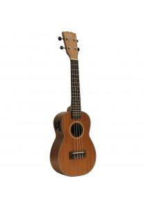 Custom Acoustic UC5E
