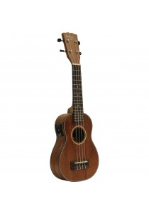 Custom Acoustic US5E