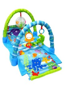 2-In-1 Oceanic Play Gym