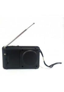Rechargeable USB and microSD Slot Mini Digital MP3 Player FM Radio