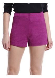 High Waisted Shorts (Purple)