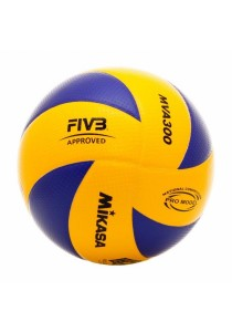 Mikasa MVA 300 Volleyball with a Needle and Carrying Net