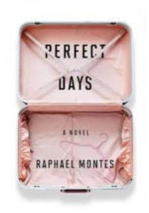 Perfect Days [9780399564352]