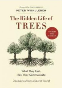 The Hidden Life of Trees : What They Feel, How They Communicate: Discoveries from a Secret World [9781771642484]