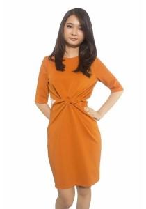 Ladies Room Half Sleeve Fitted Dress - Brown