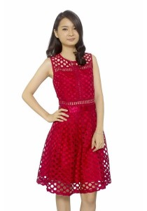 Ladies Room Full Lace Pleated Dress - Red