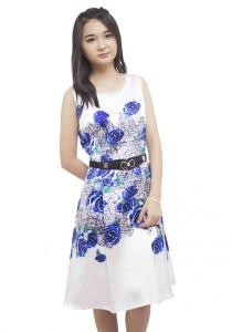 LadiesRoom Rose Print Pleated A-Line Dress (Blue)