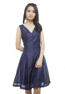 LadiesRoom Sheer A-Line Dress (Blue) L