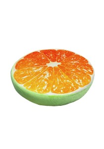 Maylee Fruit Series Throw Pillow (Mat) D38cm Orange