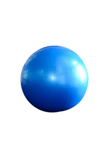 Exercise Fitness Ball (Blue/Silver)