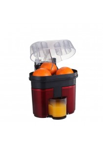 Orange & Lemon Huicer