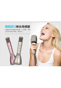 Portable Bluetooth Persona Microphone & Speaker (Combined) (Pink) - ORIGINAL & High Quality