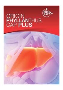 Bio-Bay Origin Phyllanthus Plus Capsules 100s