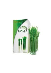 ASH II Kamut - Alkalize & Energize - Gluten Free (5g x 30 Sachets)