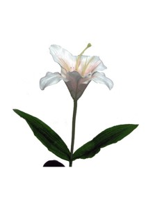 Solar Garden Flower LED Stick Light (Pink Lily)