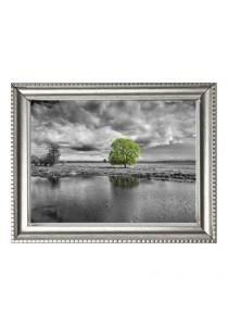 Walplus Frame - Green Tree Landscape Wall Stickers