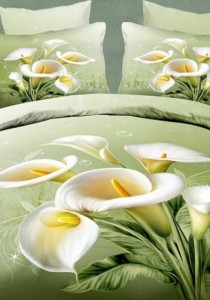 Alocasia Bedding Set With Quilt Cover (Queen)