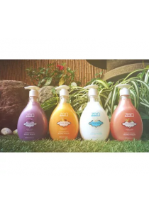 ZEN Garden Hand Wash 500ML - Royal Jelly