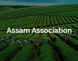Assam Association