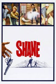 เพชฌฆาตกระสุนเดือด (Shane)