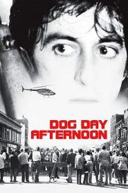 ปล้นกลางแดด (Dog Day Afternoon)