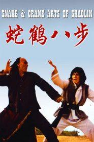 ศึกบัญญัติ 8 พญายม (Snake and Crane Arts of Shaolin)