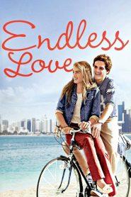 วุ่นรักไม่รู้จบ (Endless Love)