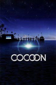 โคคูน สื่อชีวิต (Cocoon)