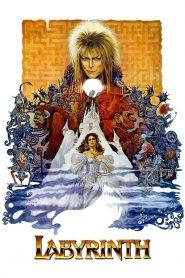 มหัศจรรย์เขาวงกต (Labyrinth)