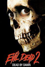 ผีอมตะ ภาค 2 (Evil Dead 2)