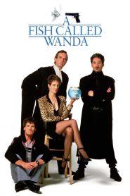 รักน้องต้องปล้น (A Fish Called Wanda)
