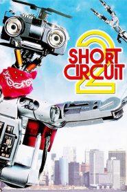 คนครับ ผมเป็นคน ภาค 2 (Short Circuit 2)