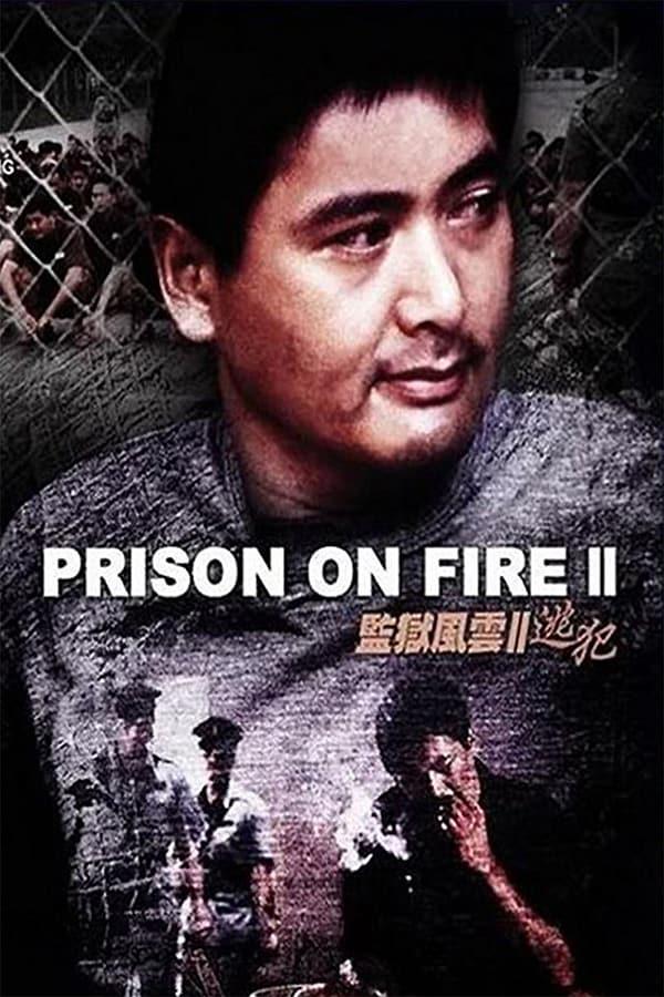โหดเดือดระอุ (Prison on Fire II)