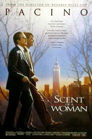 ผู้ชายหัวใจไม่ปอกเปลือก (Scent of a Woman)