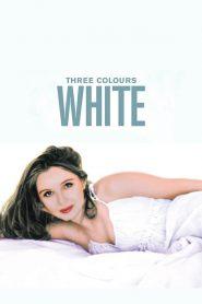 Three Colors : White
