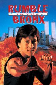 ใหญ่ฟัดโลก (Rumble in the Bronx)