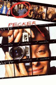 จิ๊จ๊ะ เจ๊าะแจ๊ะ โฟกัสรักเพคเกอร์ (Pecker)