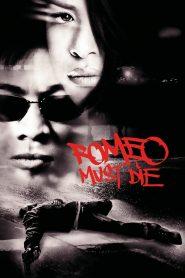 ศึกแก๊งค์มังกรผ่าโลก (Romeo Must Die)