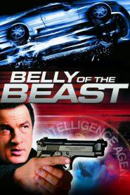 ฝ่าล้อมอันตรายข้ามชาติ (Belly of the Beast)