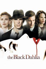 พิศวาส ฆาตกรรมฉาวโลก (The Black Dahlia)