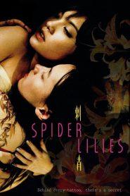 จูบแรก กอดสุดท้าย หัวใจไม่เคยลืม (Spider Lilies)