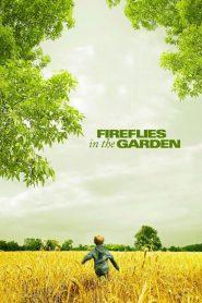 ปาฏิหาริย์สายใยรัก (Fireflies In The Garden)