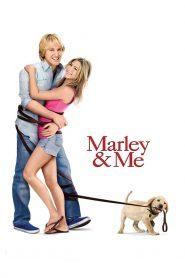 จอมป่วนหน้าซื่อ (Marley & Me)