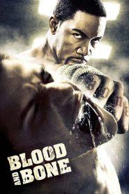 โคตรคนกำปั้นสั่งตาย (Blood and Bone)