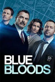 Blue Bloods (บลูบลัดส์ สายเลือดผู้พิทักษ์)